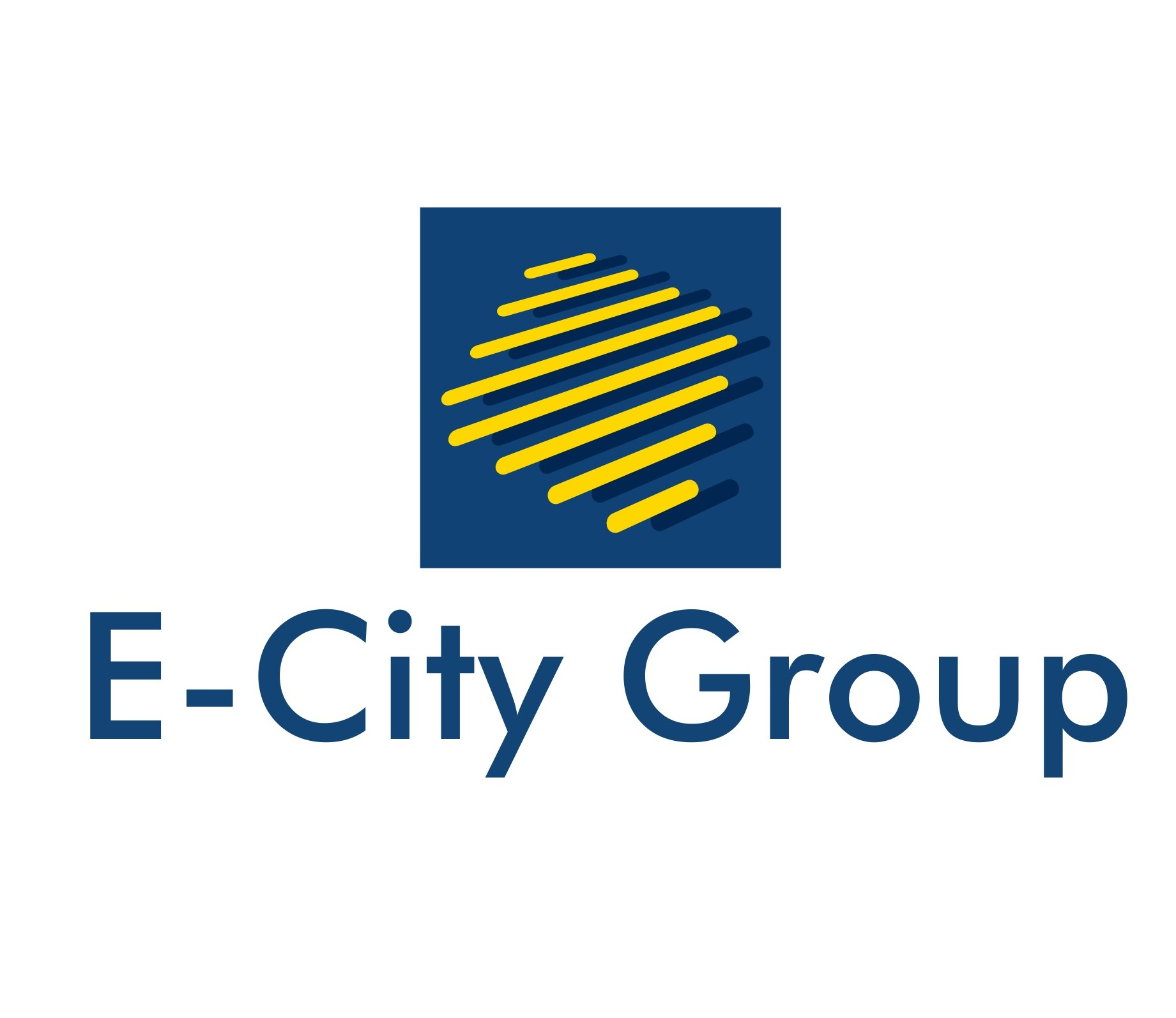E-CITY GROUP Srl